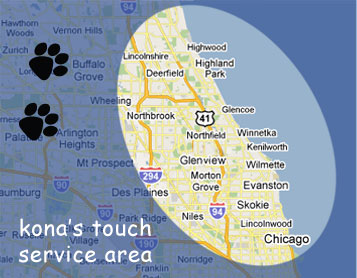 dog training service map