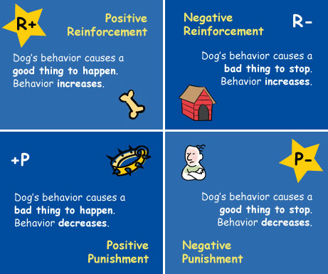 operant conditioning positive and negative reinforcement 1 operant conditioning examples for each example below, decide whether the situation describes positive reinforcement (pr), negative reinforcement (nr), positive.