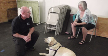 Positive Dog Trainers Directory