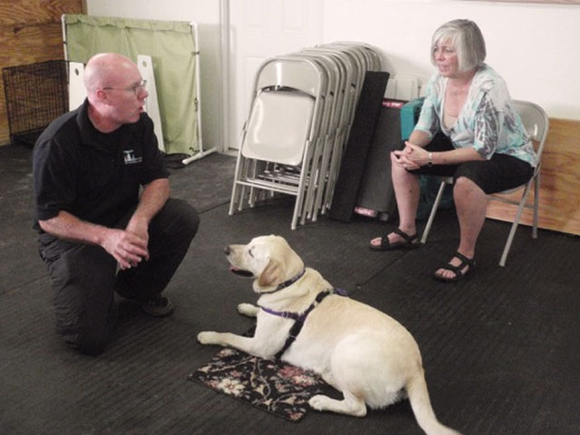 Positive Dog Trainer Directory